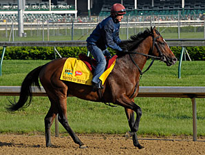 Master of Hounds jogs at Churchill Downs 5/5/2011.