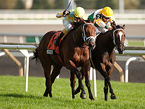 Matador Holds On in Cup and Saucer Thriller