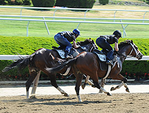 Materiality (inside) and Stanford at Belmont Park on May 29, 2015.