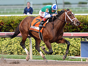 Unbeaten Materiality Secures Florida Derby
