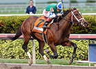 Pletcher Trio Breezes at Palm Beach Downs