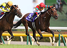 Maurice Finds More for Yasuda Kinen Win