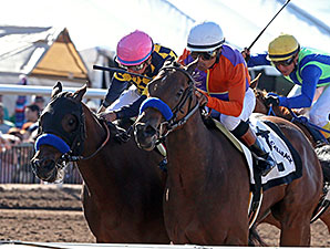 Maybellene wins the Sunland Park Oaks.