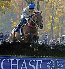 McDynamo Repeats in Breeders' Cup 'Chase