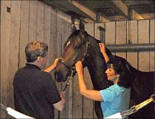 Derby Rubdown: Hard Spun Gets Ready With a Massage