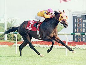 Mecke in the 1996 Arlington Million.