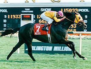 Mecke wins the 1996 Arlington Million