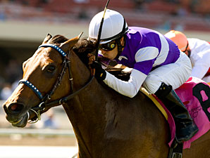 Medaglia D'Amour wins the 2010 Wilshire.