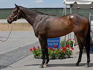 Medaglia d'Oro Filly Sets Maryland Record