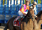 Medal Count Returns to Turf at Kentucky Downs