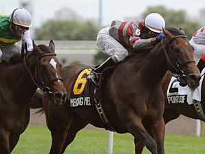 Mekong Melody wins the 2010 Dance Smartly Stakes.
