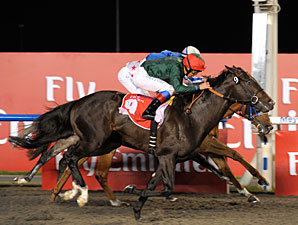 Mendip wins the 2011 Burj Nahaar.
