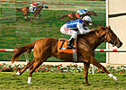Meteore Rises to the Top in La Jolla Handicap