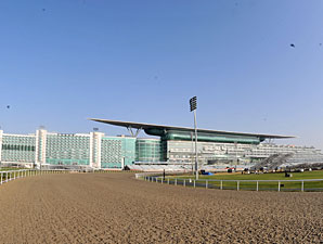 U.A.E. to Supply Horses for Chinese Race Day