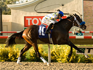 Mi Sueno wins the 2009 Sorrento.