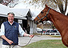 Talkin&#39; Horses to Focus on Breeding, Sales