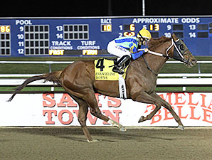 Mico Margarita wins the 2014 Oak Hall Stakes.
