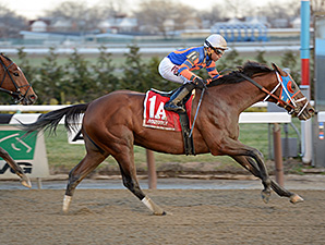 Micromanage wins the 2014 Queens County Stakes.
