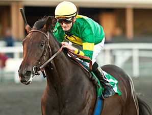 Midnight Ballet wins the Sharp Cat Stakes.