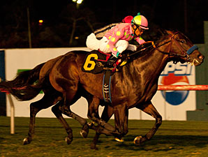 Midnight Interlude Wins Narrowly in Turf Bow