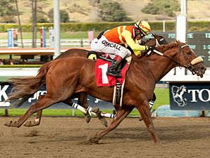 Midnight Transfer wins the San Pedro Stakes.