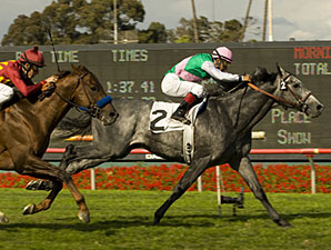 Midships wins the 2009 Charles Whittingham.