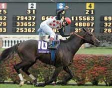 Miesque's Approval Is Eclipse Male Turf Winner