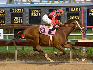 Mighty Rule wins the 2009 Lightning Jet.