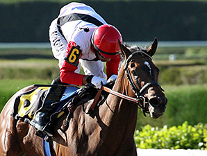 Milam wins the 2014 Pica Slew Stakes.