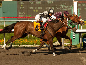 Miles Rules, inside, in the 2011 Melair Stakes.