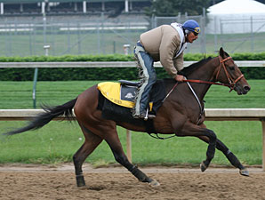 Derby Winner Primes for Preakness
