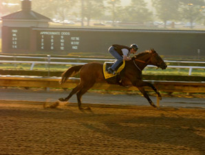 Mine That Bird in West Virginia Derby Work