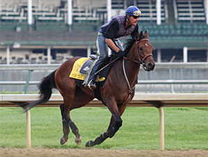 Mine That Bird gallops at Churchill Downs on May 23, 2009.