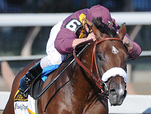 Miner's Reserve Exits Travers With Sore Foot