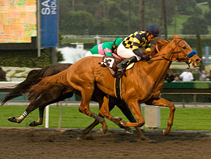 Misremembered wins the 2010 Santa Anita Handicap.