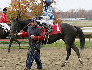 Miss Bullistic wins the Donn Freyer Stakes.