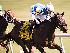 Miss Bullistic wins the 2014 Selima Stakes.