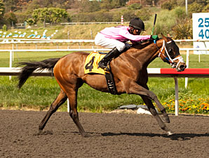 Miss Empire Seeks Second Stakes Win