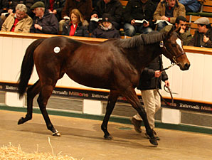 Miss Keller Tops Tattersalls Opening Day