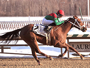 Miss Singhsix ridden by Luis Garcia wins the $70,000 Maryland Racing Media Stakes for fillies and mares at Laurel Park in Maryland on Saturday, Feb. 20, 2010.