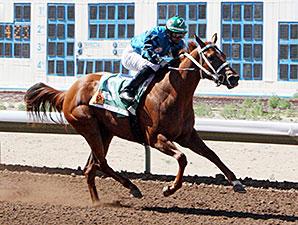 Missing Reba wins the 2014 C.O. Ken Kendrick Memorial Stakes.
