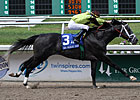 Big Names Clash in New Orleans Handicap