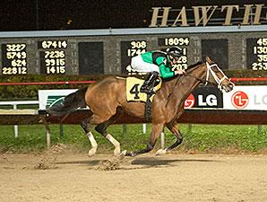 Missjeanlouise wins the 2013 Powerless Handicap.