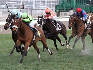 Miz Ida wins the 2012 Lacombe Memorial Stakes.