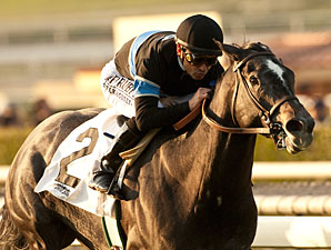 Mizdirection Works Over Santa Anita Turf