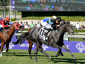 Mizdirection wins the 2012 Breeders' Cup Turf Sprint.