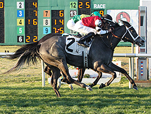 Mizz Money wins the 2015 Allen LaCombe Memorial Stakes.