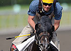 Mobilizer Getting Attention in Queen&#39;s Plate