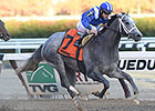 Mohaymen Continues Work Toward Holy Bull