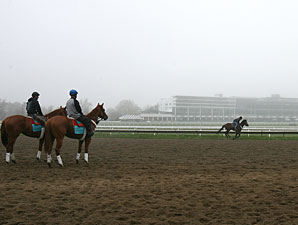 117 Entered for Monmouth's 12-Race Opener